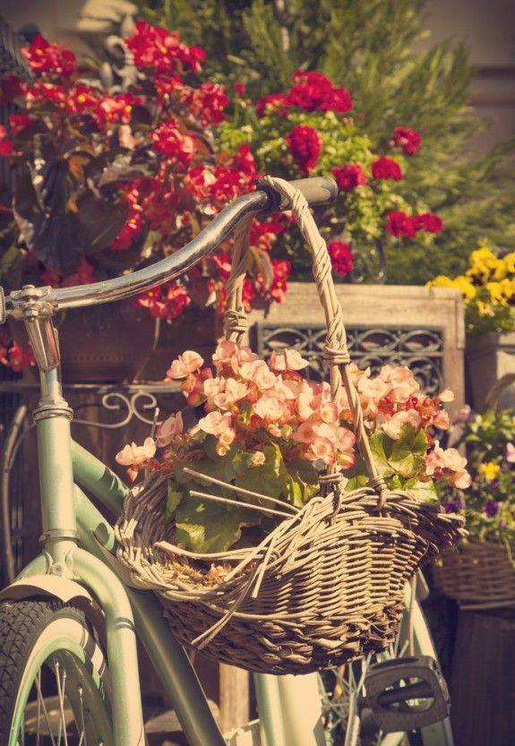 Das Fahrrad kann auch an einen Baum oder großen Stein angelehnt werden. Der Korb wird einfach an den Lenker gehängt.