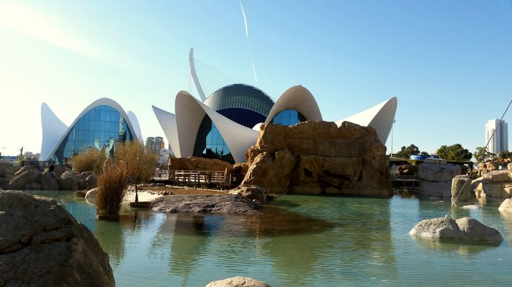 Oceanogràfic, Valencia. Largest aquarium in Europe.