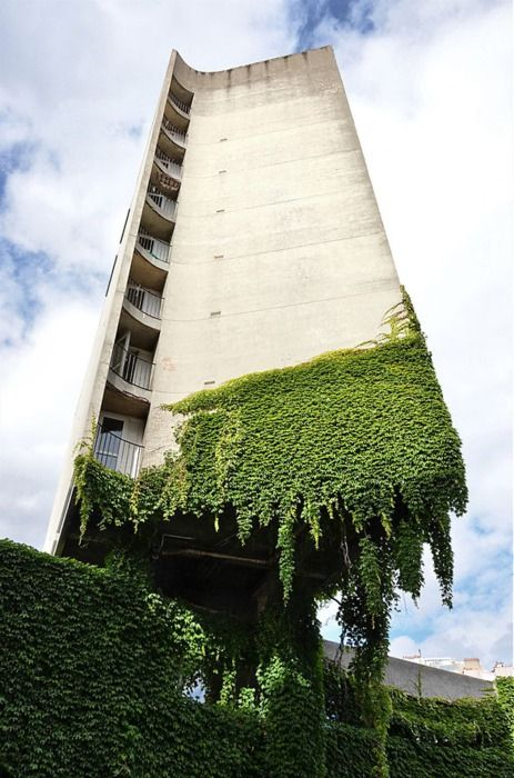 Mossy fairy tale delight: Green Building, Concrete Architecture, Paris, Green Wall, Vines, Offices Plants, Vertical Gardens, Buildings, Hanging Gardens