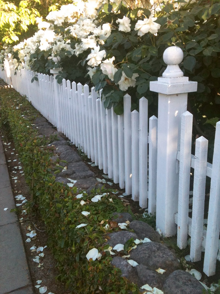 my romantic home white picket fence love jardin. Black Bedroom Furniture Sets. Home Design Ideas