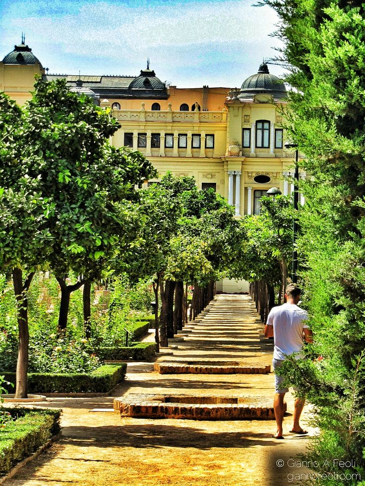City Hall and Puerta Oscura Garden in Malaga Centre (Costa del Sol - Andalusia, Spain)
