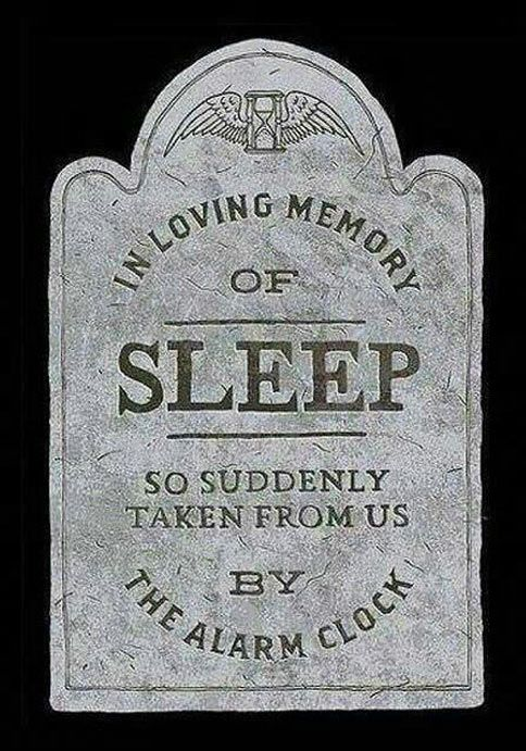 RIP old friend // funny pictures - funny photos - funny images - funny pics - funny quotes - #lol #humor #funnypictures