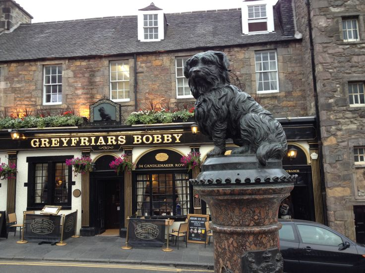 Greyfriars Bobby in Edinburgh, Scotland!
