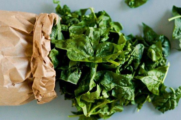 """""""Mangia gli spinaci, diventerai forte come Braccio di Ferro!"""". Siamo cresciuti con questo mito, salvo scoprire poi che questi ortaggi non contengono esagerate quantità di ferro, almeno in forma assimilabile, come si credeva. Nonostante ciò, essi rappresentano ugualmente un bel rifornimento di vitamine e minerali.In cucina poi possono essere l'ingrediente saporito di tante ricette, dalle frittate al ripieno dei ravioli, dai rotoli di carne ai contorni veloci… Insomma, è comodo averne sempre…"""