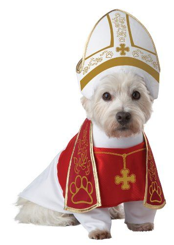 Pope Small Dog Halloween Costumes
