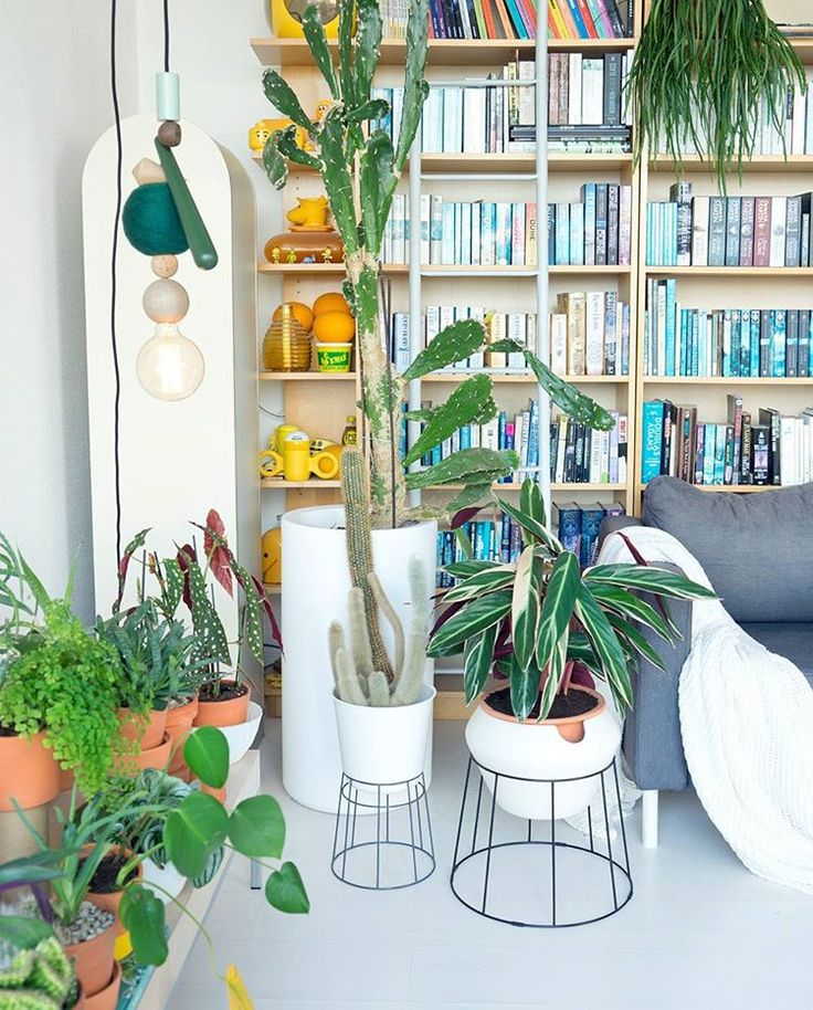 "6,836 Likes, 33 Comments - Urban Jungle Bloggers™ (@urbanjungleblog) on Instagram: ""Hello March! We're excited to team up with @IKEAuk & interiors community @atmine for their monthly…"""