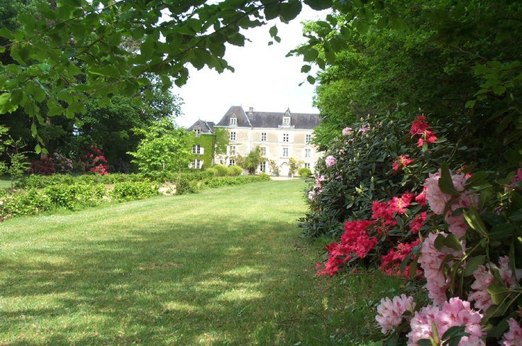 My friend's wedding reception is going to be in this chateau, Chateau de Chambiers, in Angers, France!    Arrivée au chateau de chambiers avec les rodhodendrons en fleurs