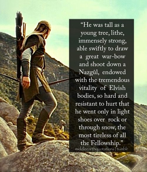 Legolas Greenleaf.  I don't care if I have two of the same quote.  The pic is so cool.