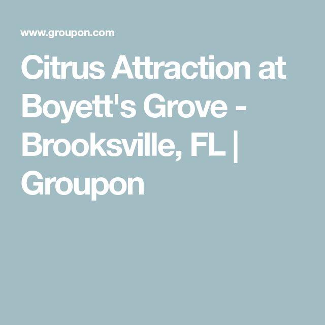 Citrus Attraction at Boyett's Grove - Brooksville, FL   Groupon