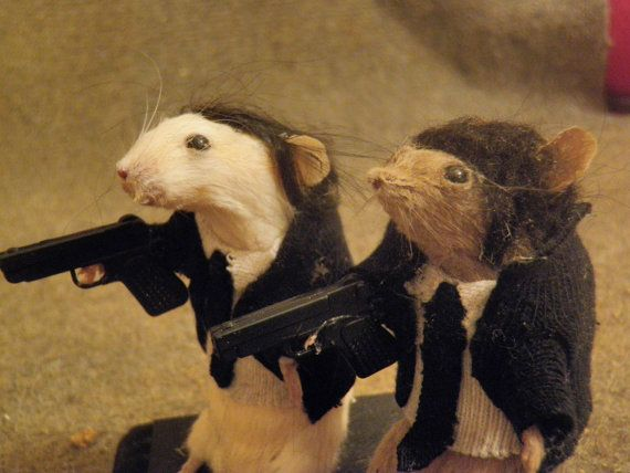 Taxidermy Pulp Rodents by TheCurious13 on Etsy, $65.00