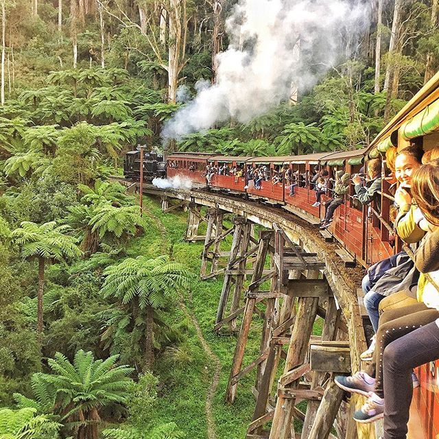 All aboard the Puffing Billy steam train @puffingbillyrailway. Fun filled day in the Dandenong Ranges, just an hours drive from Melbourne city centre.