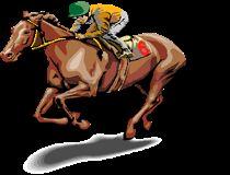Daca si tie iti plac jocurile cu animale, joaca si tu acest joc cu cai. Alege unu din cai pentru a participa la cursa cu cai. Daca nu vei fi...