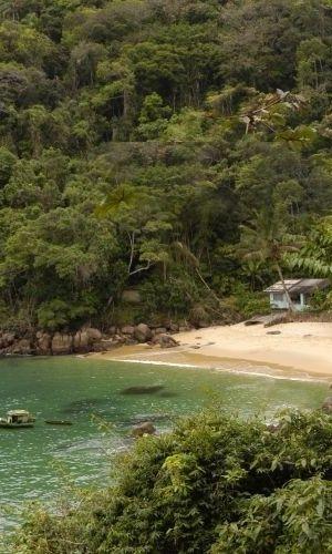 Ilha das Couves, em Ubatuba, um dos melhores points para mergulho #SP