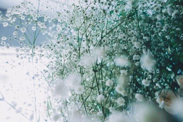 ex.(イクス)の生花・ドライフラワー「ex.│bouquet 季節の花束」をex.(イクス)で購入できます。暮らしを素敵にするモノを集めたショッピングモール、キナリノモール。