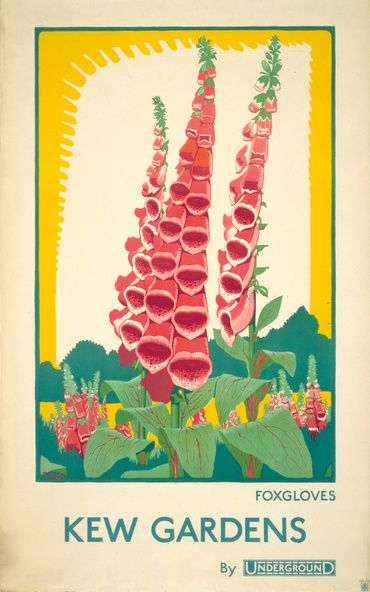 dora m. batty, foxgloves, 1924