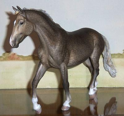 Custom/CM Breyer Horse, Traditional Dappled Warmblood Mare x B. Morgan