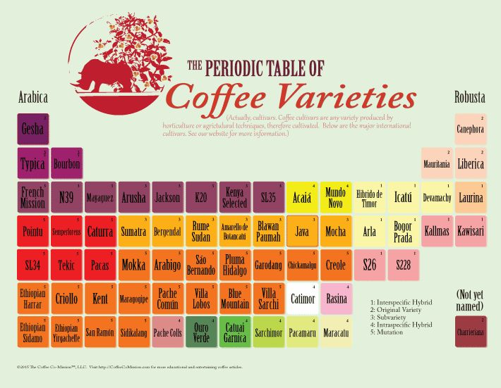 Periodic Table of Coffee Varieties – The Coffee Co-Mission