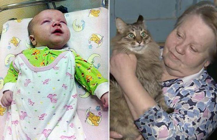 Masha, een langharige kat die door buurtbewoners in het Russische Obink verzorgd wordt, heeft het leven van een achtergelaten baby gered.