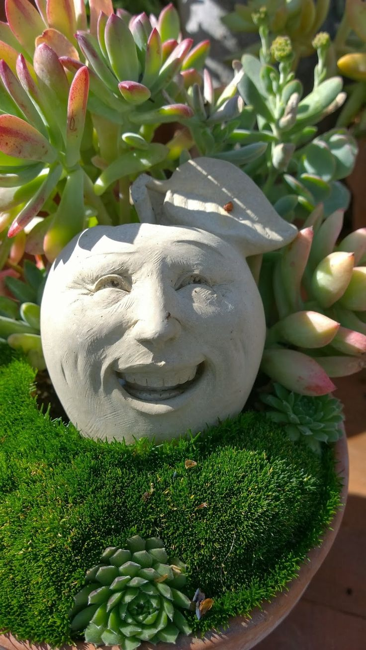 135 best images about Head Pots, Face Pots - Container Gardening ...