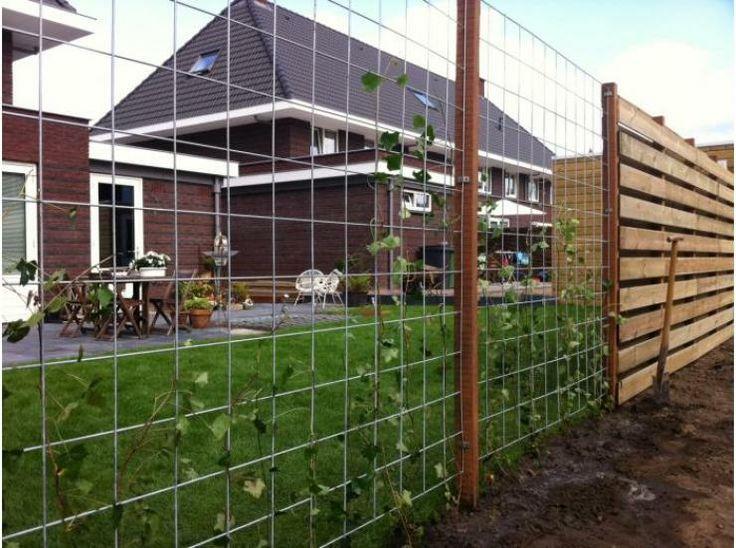 Een open draadmat schutting (ook wel gegalvaniseerde trellisscherm genoemd) is zeer betaalbaar, buur-vriendelijk, creert een groene tuinafscheiding, eenvoudig te plaatsen tussen 2 vierkante 7x7 cm palen en geeft een ruimtelijk effect.