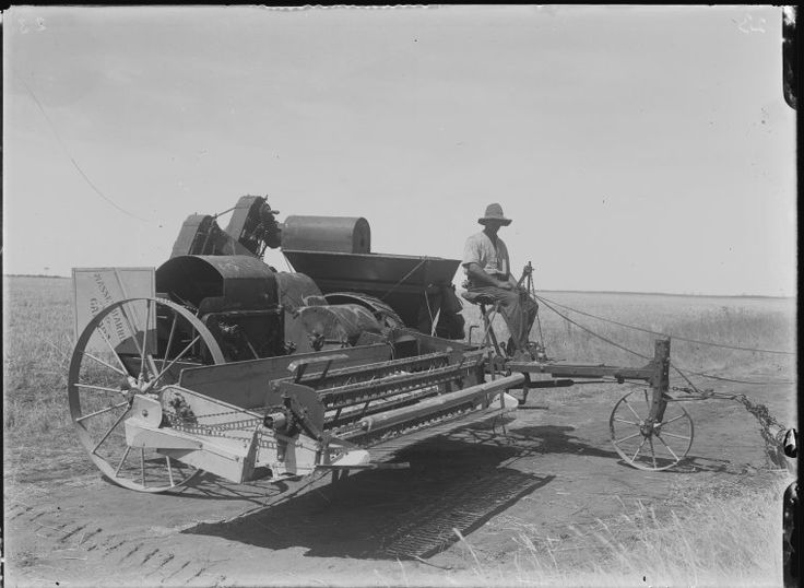 008484PD: Harvester at Wubin, 1922  https://encore.slwa.wa.gov.au/iii/encore/record/C__Rb2940959