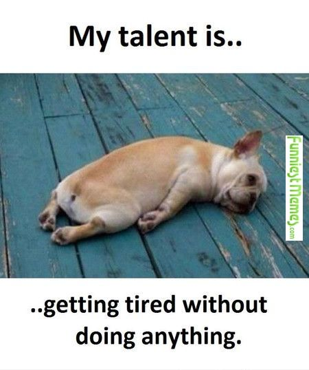 And I am very very good at it....