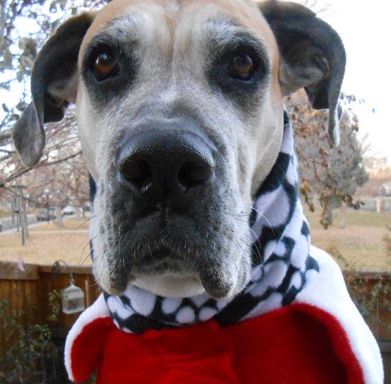 Big Dog Snood Neck Warmer W/ Paws, Hearts, Animal Prints