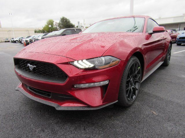 Ebay 2019 Mustang Ecoboost 2019 Ford Mustang Ecoboost 5 Miles