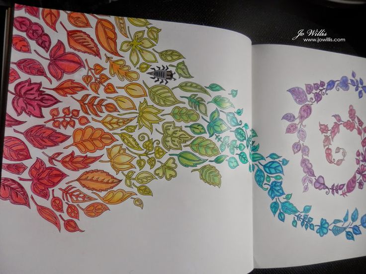 Enchanted Forest Book Joanna Basford Colouring In Prismacolor Secret Gardens Here I Go Again Forests Angels Ideas