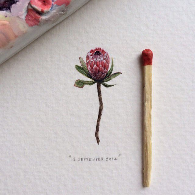 Postcards For Ants. Lorraine Loots.