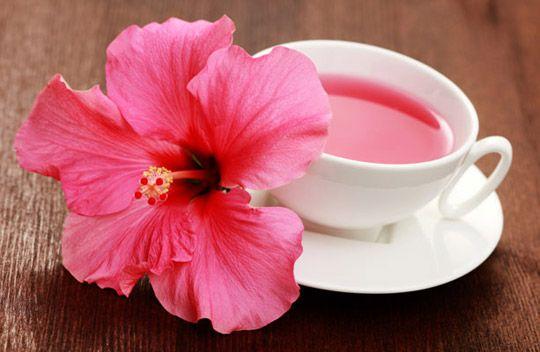 Как чай каркаде понижает давление: правила приема . чай из гибискуса