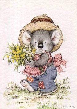 Sarah Kay Koala Bear