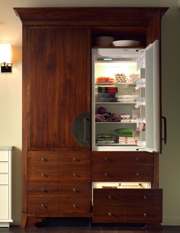 Modern Appliances -- Refrigerator that matches the cabinets