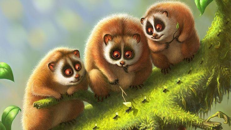 lemur_lemurs_branch_animals_moss_94418_3840x2160.jpg (3840 ...
