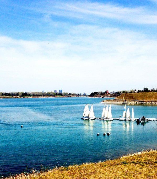 Gold and blue hues of Glenmore Reservoir where the sailboats dock