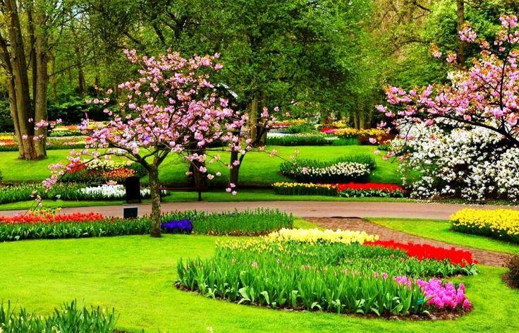Gambar Taman Bunga Yang Indah