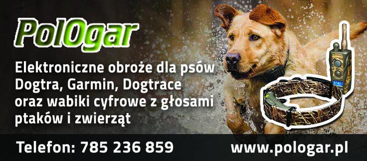 Zapraszam na stronę: www.pologar.pl