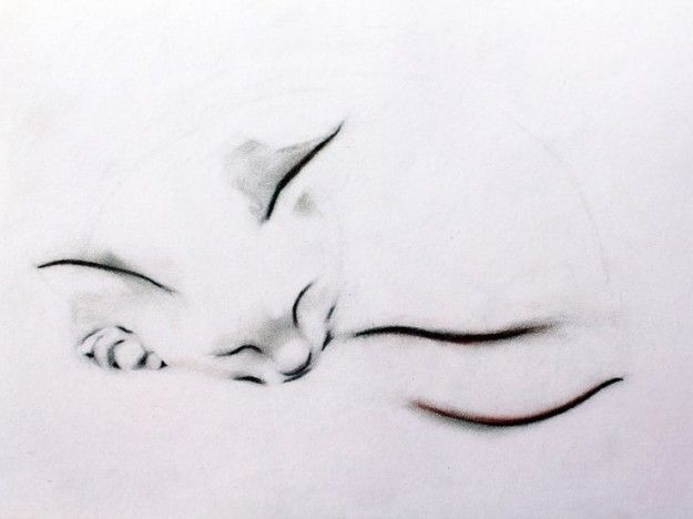 Tatuajes de gatos: Sutil