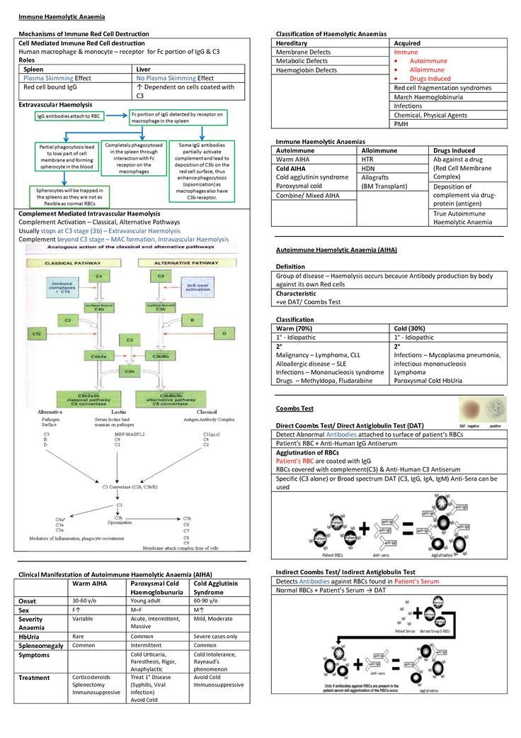 • Classification of Hemolytic Anemia: - Google Search