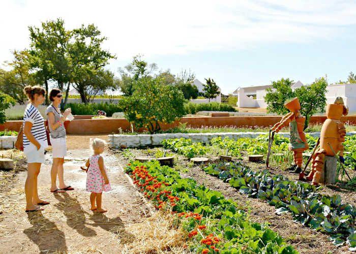 Babylonstoren | Gardens | Paarl