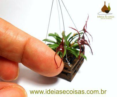 mini orchid Dracula simia (monkey-face) - handmade in clay cold porcelain