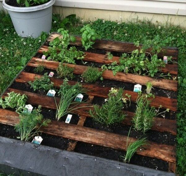 How about this for a beauty of a product made by re transforming the wood pallets in to something of real importance and utter utility in shape of a wooden herb that makes your garden a much brighter and stunning place.