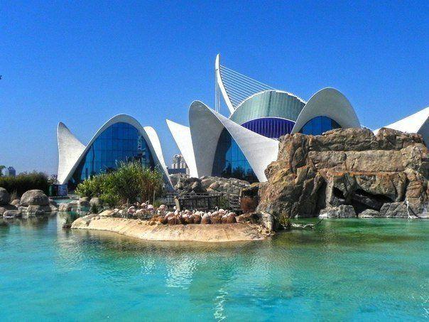 Океанографический парк, Валенсия, Испания / Speleologov.Net - мир кейвинга