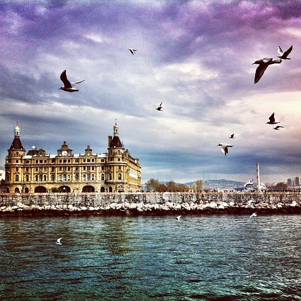 #istanbul #haydarpasa #kadikoy #seagulls #marmarasea #sky #clouds - @mongoren- #webstagram