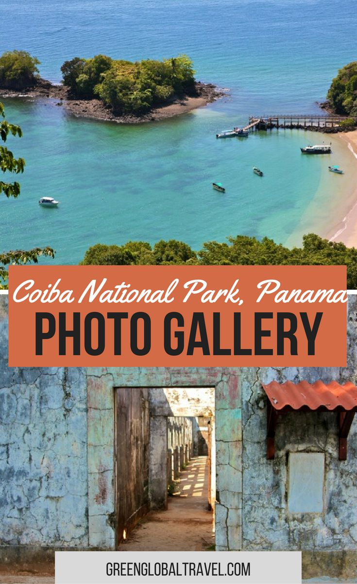 Look at our photo gallery from our trip to Coiba National Park, Panama. | UNESCO World Heritage Site | Scarlet Macaws | Howler Monkeys | Agoutis | Crested Eagles | Crocodiles