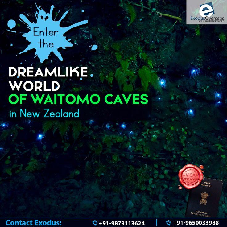 Explore the dreamlike world of the Waitomo Glowworm caves in New Zealand with hassle free travel visa from Exodus Overseas. Contact Mr. Pankaj Malhotra (Ex-Visa Officer) Ph: +91-9650033988. For any visa other than student contact Ms. Rajni Garg (Licensed immigration advisor) at +91-9873113624. #ExodusOverseas #hasslefreetravelvisa #NewZealand