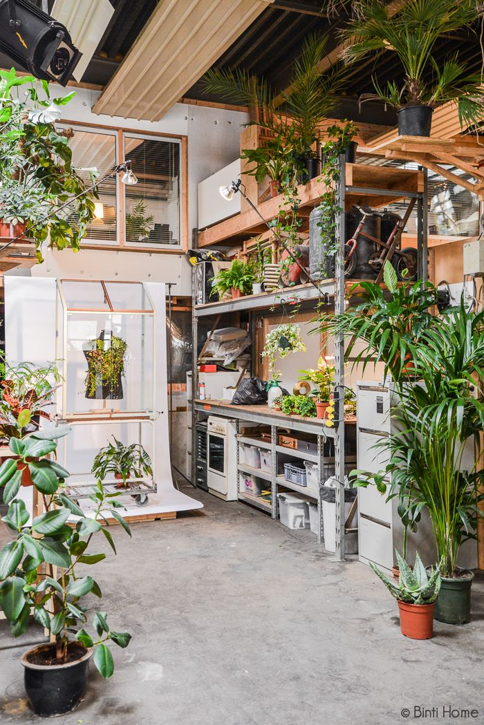 Green paradise in atelier Eindhoven