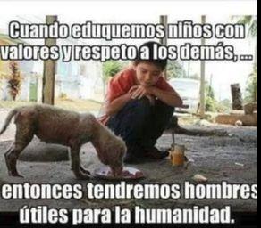 Cuando eduquemos niños con valores y respeto a los demás ... entonces tendremos hombres útiles para la humanidad .... #foto #fotos #mensaje #mensajes #perro #perros #niño #niños #amor #love #animales #animal #mascota #mascotas