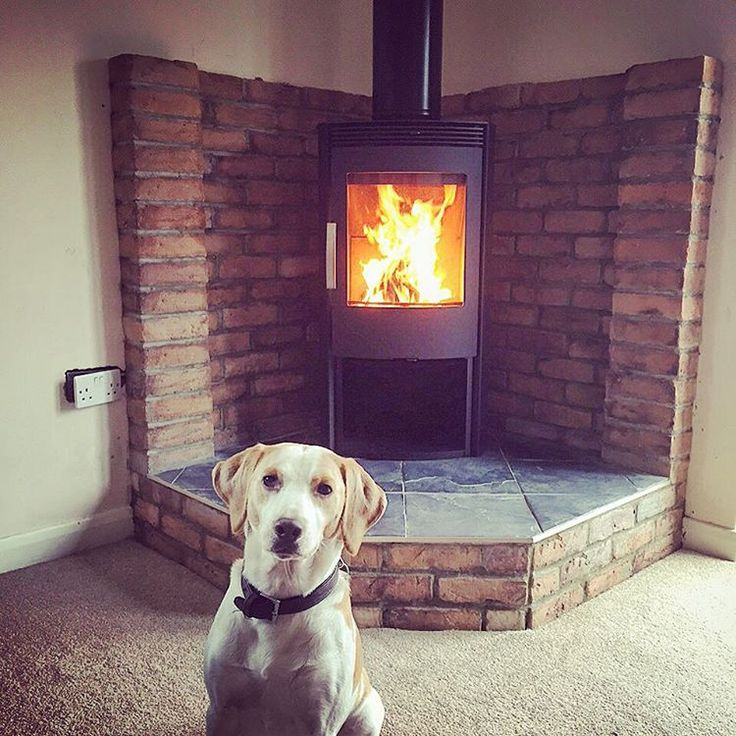 Another happy customer, the glorious Termatech TT40 is ablaze in the background on a self built #rustic platform. #dogsofinstagram #woodburner #cosy #warm #lovefromJRT