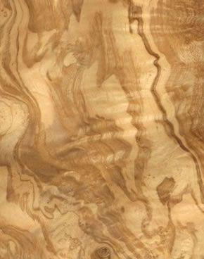 gorgeous wood veneer: olive ash burl